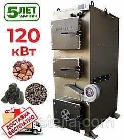 Твердотопливный котел 120 кВт DM-STELLA (двухконтурный)