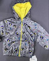 Куртка - ветровка детская для мальчика