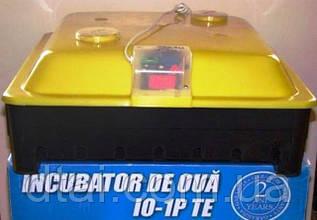 Инкубатор ARGIS для 56 куриных и утиных яиц, Румыния