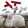 Поилка нипельная для кроликов и др. мелких грызунов, фото 2