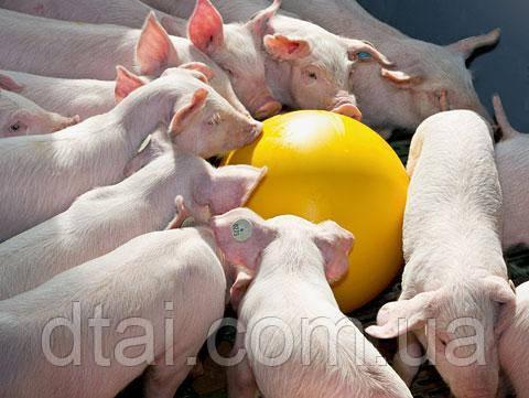 Игрушка-шар Анти-стресс для свиней