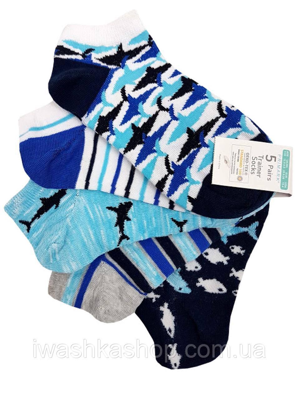 Стильные низкие носки с акулами на мальчиков 7 - 10 лет, р. 30,5 - 36, Primark