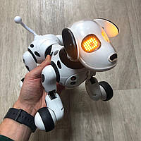 Собака робот 9007A на радиоуправлении с аккумулятором Robot Dog Интерактивная игрушка для детей