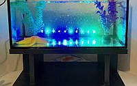 Аквариум для рыб 54литра  60*30*30см