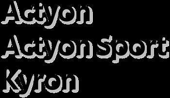 Ssang Yong Actyon / Kyron