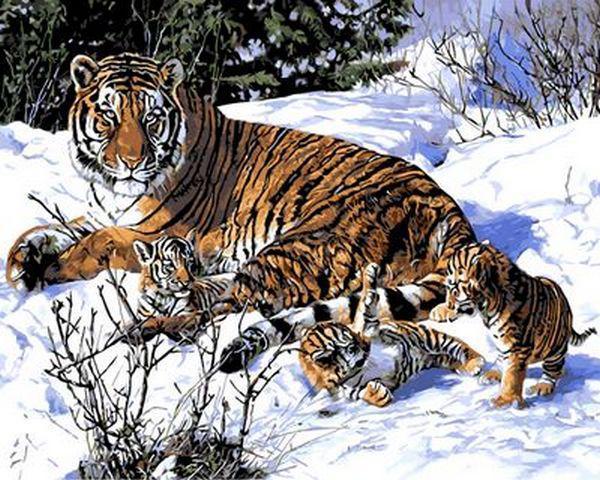 Картина за номерами 40×50 див. Mariposa Тигряча сім'я (Q 490)