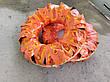Резина на мотоблок 6.00-12 десяти слойная Casumina Вьетнам (без камеры), фото 6