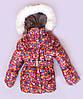 Зимний костюм для девочки недорого, фото 2