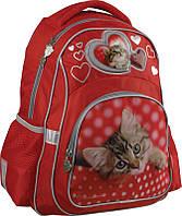 Школьный рюкзак для девочки, ортопедический 518 Rachael Hale, фото 1