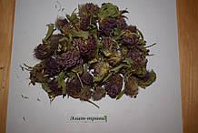 Клевер красный 50 грамм