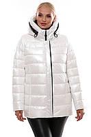 Качественная женская зимняя короткая куртка