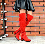 4 цвета! Деми и Зима! Шикарные  ботфорты на каблуке со шнуровкой сзади, фото 2