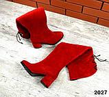 4 цвета! Деми и Зима! Шикарные  ботфорты на каблуке со шнуровкой сзади, фото 3