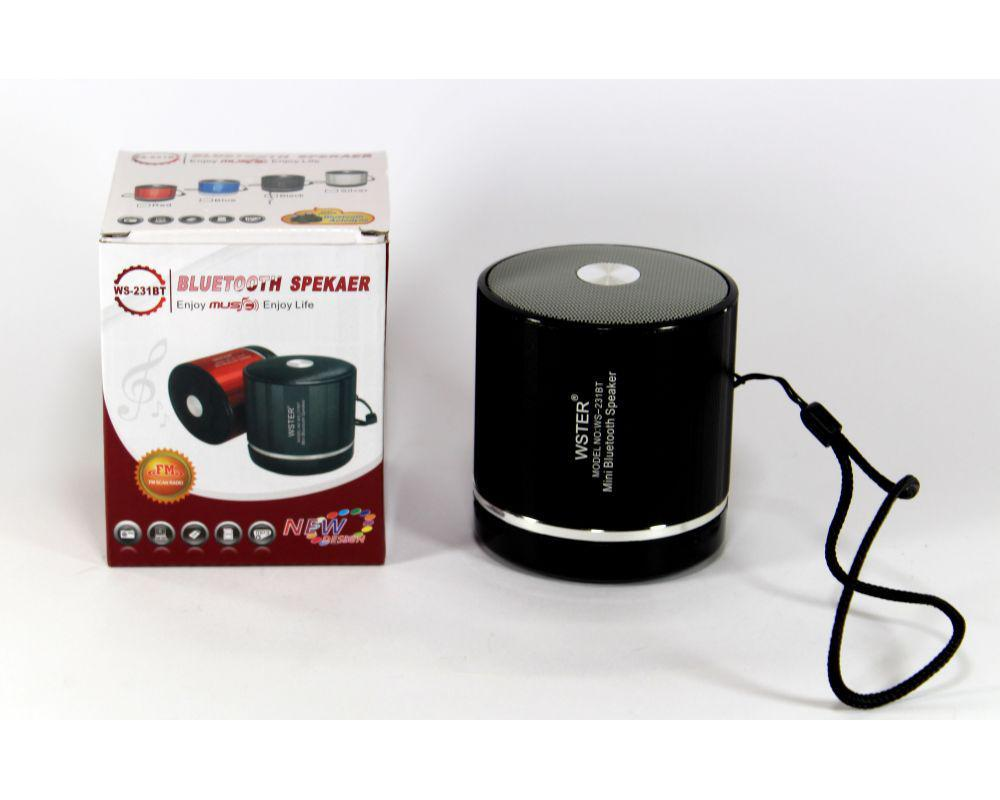 Портативная Колонка SPS WS 231+BT, Мобильная колонка, Компактная портативная колонка блютуз. Bluetooth Колонка