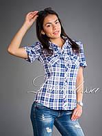 Рубашка клетка синий, фото 1