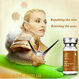 Сыворотка красоты - экстракт лаванды и гиалуроновая кислота QYANF Lavender Original Liqud 10ml, фото 4