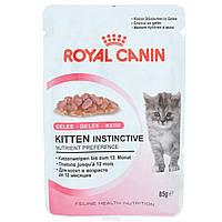 Консервы Royal Canin Kitten Instinctive (в желе), для котят, упаковка 12шт х85г