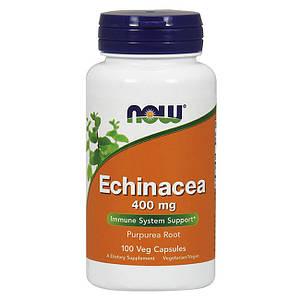 Эхинацея NOW Echinacea 400 mg 100 veg caps
