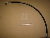 Рукав МТЗ L=730 Ключ 24 d-10 (с углом 90*) (РВД) (Агро-Импульс.М.). 680-4607140-73