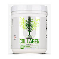 Universal Nutrition Collagen (300 g)