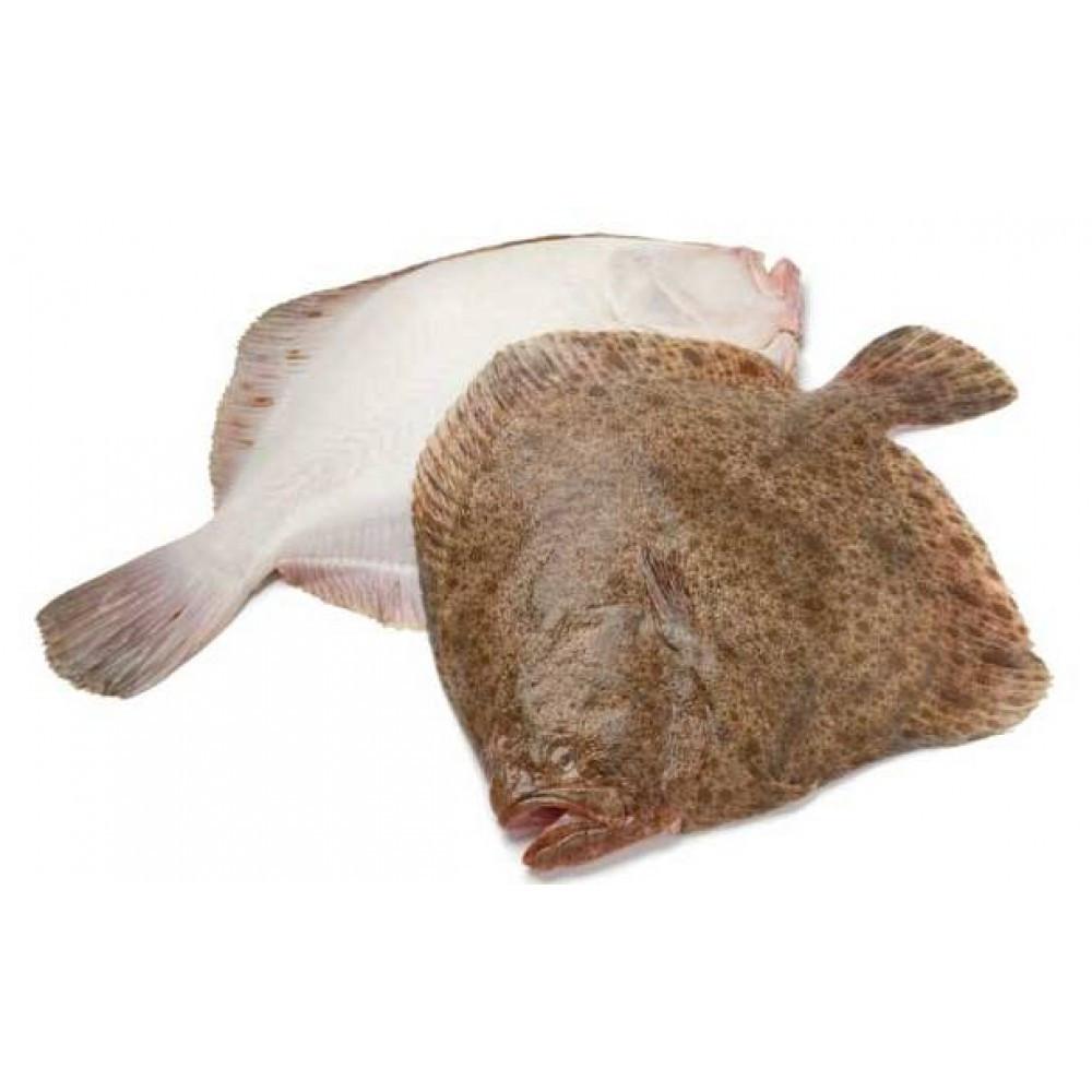 Камбала азовская мелкая вес 0,8 - 1 кг/штука