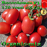 Семена, томат Рекордсмен f1 EZ 7009 (5000 семян) ТМ Libra Seeds (США), фото 2
