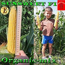 Семена,  сахарная кукуруза САНСВИТ F1, проф.пакет 1 кг (ориентировочно 5000 семян), ТМ Erste Zaden