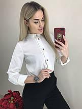 Стильная женская блуза с регулируемыми рукавами /разные цвета, 42-46, ft-1041/, фото 2