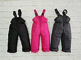 Зимний детский полукомбинезон, штаны, фото 2