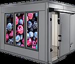 Холодильне обладнання (холодильна камера для зберігання ягід та фруктів)