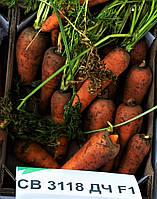 Морковь СВ 3118 F1 Seminis (1.6-1.8) 200 000