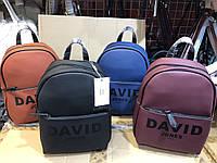 Женские рюкзаки и сумки оптом David Jones