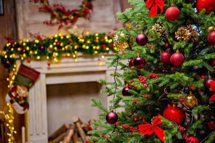 Пять необычных идей для новогоднего декора