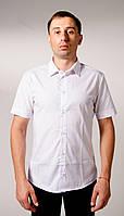 Рубашка с коротким рукавом Белая классика, фото 1