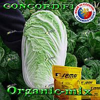 Капуста пекинская Конкорд f1, ТМ SEMO (Чехия), проф. пакет 2500 семян