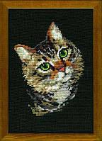 """Набор для вышивания """"Серая кошка"""""""