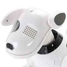 Интерактивная собака робот Robot Dog Smart Pet на радиоуправлении, далматинец + подарок, фото 3