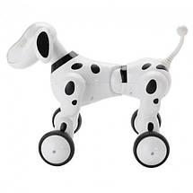 Интерактивная собака робот Robot Dog Smart Pet на радиоуправлении, далматинец + подарок, фото 2