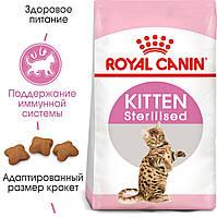 Royal Canin Kitten Sterilised 2кг-сухий корм для кошенят стерилізованих
