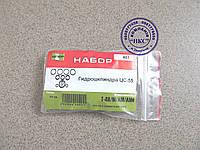 Ремонтный комплект гидроцилиндра ЦС-55.