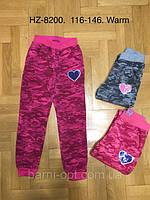 Утепленные спортивные штаны на девочек