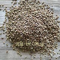 Аджван, Ажгон семена, 20 грамм