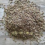 Аджван, Ажгон семена, 20 грамм - противопростудное, для снятия спазмов и колик; укрепляет нервную систему, фото 3