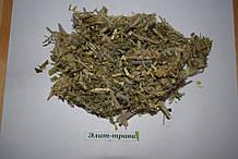 Астрагал шерстистоцветковый трава 50грамм