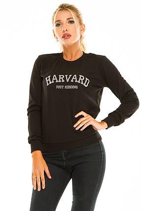 Свитшот HARVARD черный, фото 2
