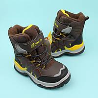 Зимние Термо ботинки для мальчика коричневые тм Том.м размер 29,30,31,32