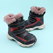 Зимние синие кожаные ботинки для мальчика бренд Bi&Ki размер 26,28