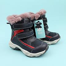 Зимние синие кожаные ботинки для мальчика бренд Bi&Ki размер 26,28, фото 2
