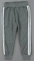 Спортивные брюки для девочек Lemon Tree, 4-14 лет. Артикул: 7698 {есть:4 года}