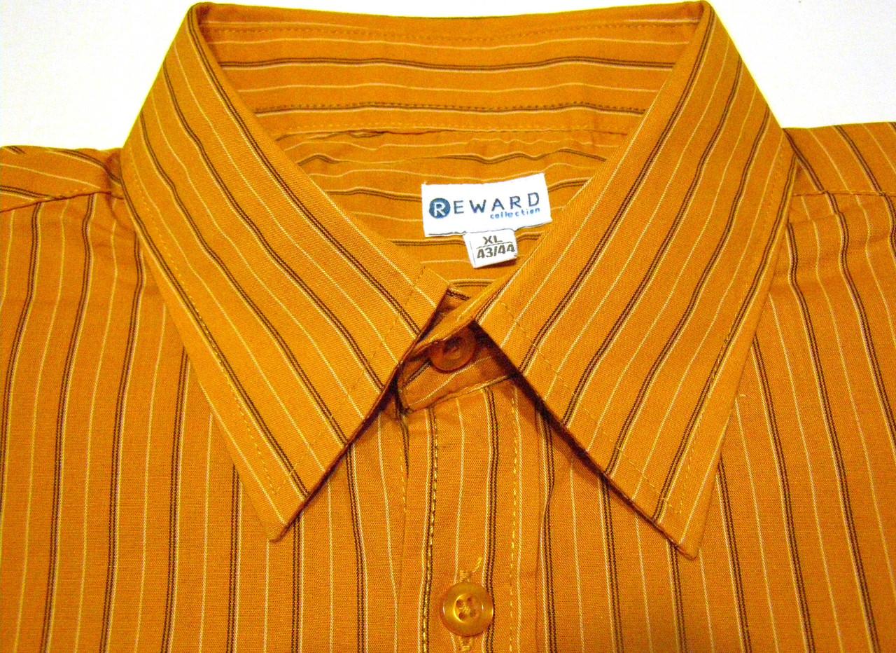 Рубашка REWARD (XL / 43-44)